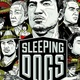Sleeping Dogs preview