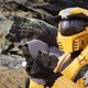 Fan-made Halo game wordt niet stopgezet door 343 Industries
